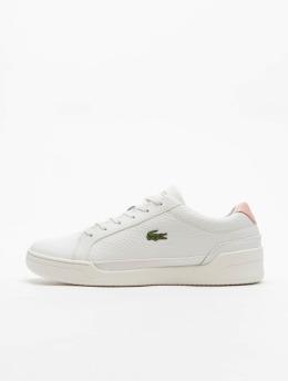 Lacoste Sneaker Challenge  bianco