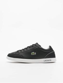 Lacoste Sneaker Graduatecap  nero