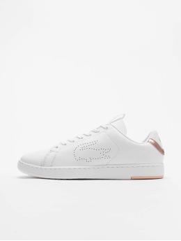 Lacoste Sneaker Carnaby Evo 1193 weiß