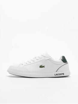 Lacoste sneaker Graduatecap  wit