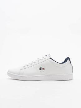 Lacoste Sneakers Carnaby Evo vit