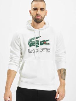 Lacoste Sweat capuche Logo blanc