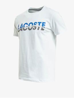 Lacoste T-Shirt Broken  blanc