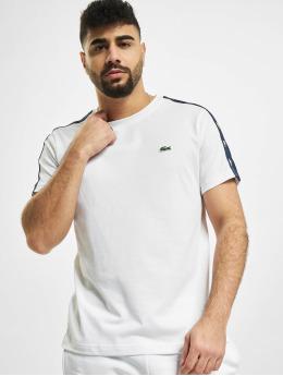 Lacoste T-Shirt Sport  white
