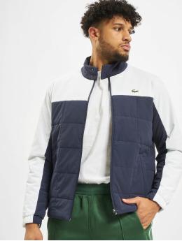 Lacoste Transitional Jackets Sport  blå
