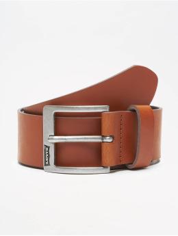 Levi's® Gürtel Cloverdale bruin