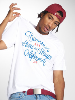 Mister Tee t-shirt Hometown wit