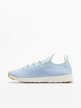 Native Shoes Sneaker Ap Nova blau