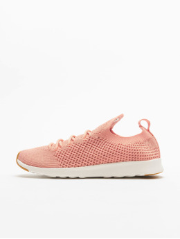 Native Shoes Sneaker Ap Nova Liteknit pink
