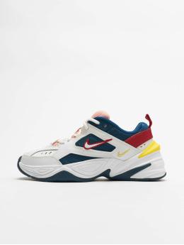 Nike Baskets M2K Tekno bleu