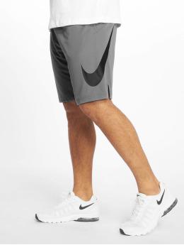Nike Performance Спортивные шорты Dri-Fit серый