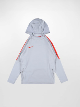 Nike Performance Hoody Dri-FIT Academy grijs