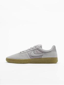 Nike SB Sneakers Team Classic grå