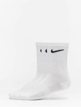 Nike SB Sukat LTWT Crew 3 Pair valkoinen