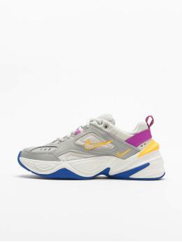 Nike Sneakers M2K Tekno  šedá
