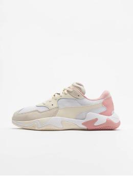 Puma | Storm Origin  rose Homme,Femme Baskets