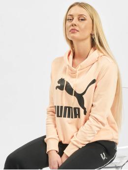 Puma Bluzy z kapturem Logo  pomaranczowy