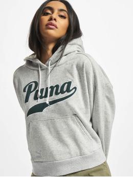 Puma Hoody Team  grijs