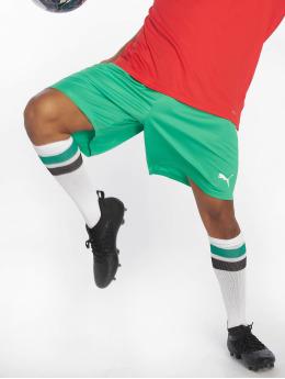 Puma Performance Футбол шорты Liga  зеленый