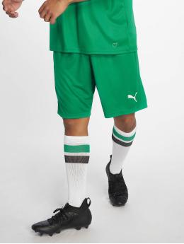Puma Performance Футбол шорты Liga Core  зеленый