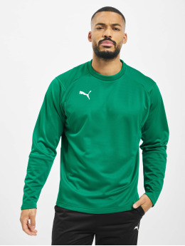 Puma Performance Camiseta de manga larga Performance Liga verde