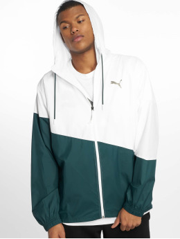 Puma Performance Funktionsjacken A.c.e. Windbreaker zielony