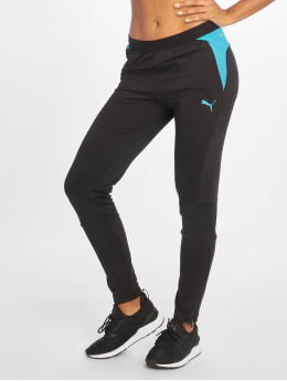 Puma Performance Jogginghose Training schwarz