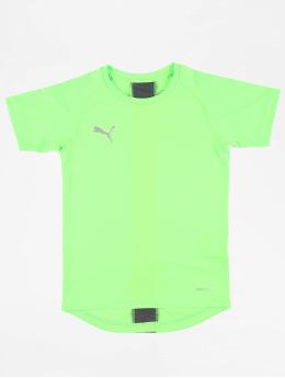 Puma Performance Shirts desportes Junior  verde