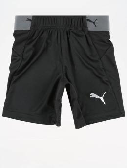 Puma Performance Sport Shorts Junior  czarny