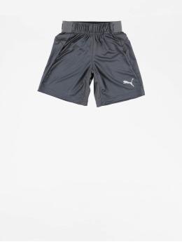 Puma Performance Sport Shorts Junior  grijs