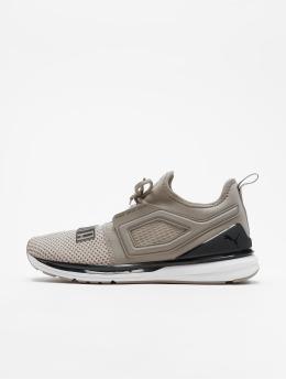 Puma Sneaker Ignite Limitless 2 grau