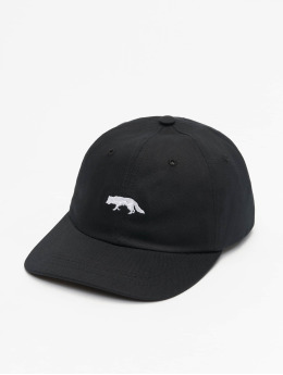 Raised by Wolves Casquette Snapback & Strapback Restricted Dad noir