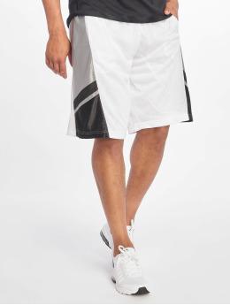 Southpole Pantalones cortos de baloncesto Basketball Mesh blanco