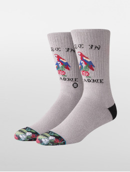 Stance Calcetines Paradice gris