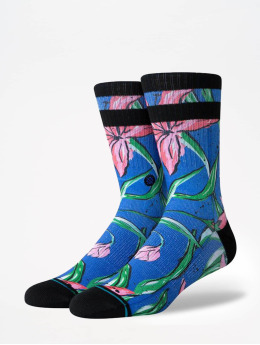 Stance Socken Foundation Waipoua blau