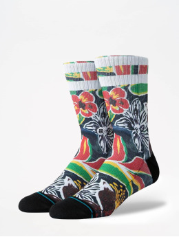 Stance Socken Foundation Sinharaja bunt