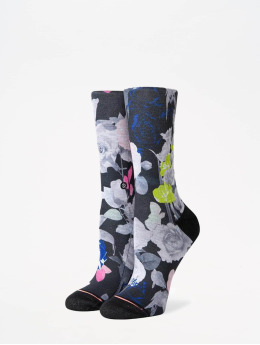 Stance Socken Foundation Splendid Crew schwarz