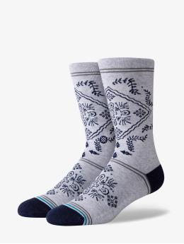 Stance Socks Bandero  gray