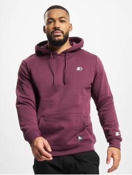 Starter Hoody Essential violet