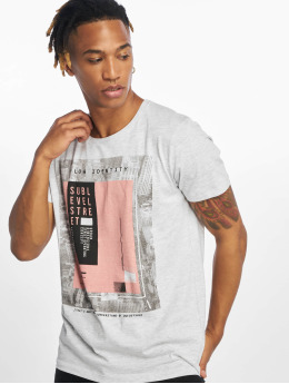Sublevel T-shirts Flow Identity grå