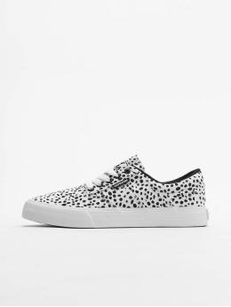 Supra Sneakers Cobalt biela