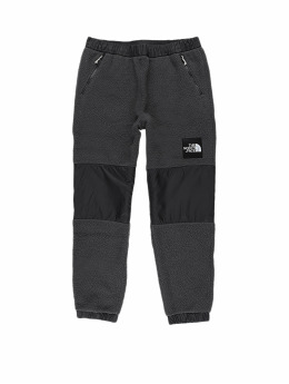 The North Face Jogginghose Denali Flc Pants grau