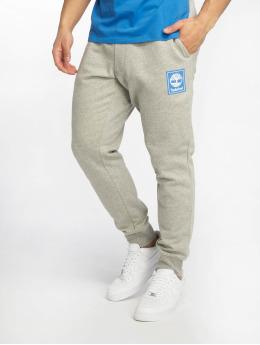 Timberland Спортивные брюки YCC  серый
