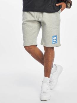 Timberland Shorts YCC grau