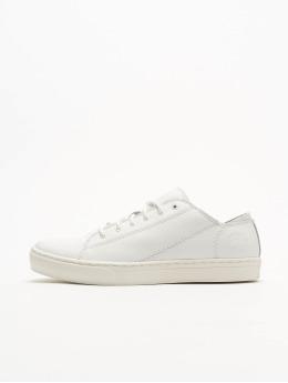 Timberland Sneaker Adv 2.0 Cupsole Modern Ox  weiß