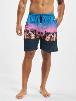 VSCT Clubwear Шорты Miami Palms цветной