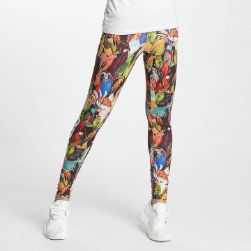 adidas Legging Passaredo multicolore