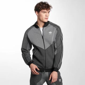 adidas originals Демисезонная куртка PLGN TT серый