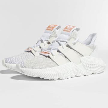 adidas originals Sneakers Prophere hvid