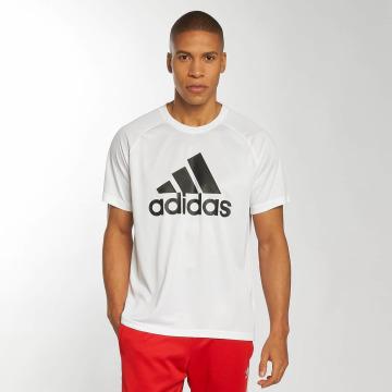 adidas originals T-shirt D2M Logo bianco